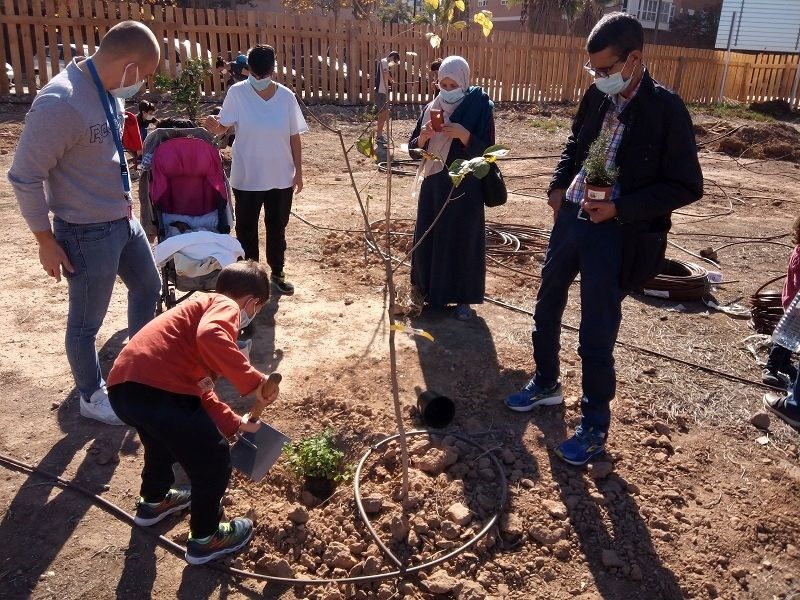 A young boy with a spade leans over a plant in the ground, next to a newly planted small tree. Several adults look at him