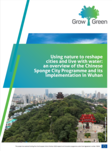 Using Nature to Reshape Cities and Live with Water: An Overview of the Chinese Sponge City Programme and Its Implementation in Wuhan